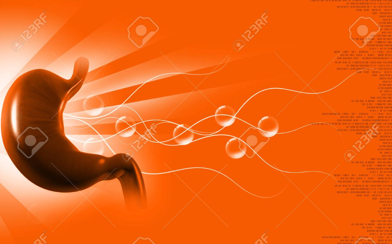 Digital illustration of stomach in colour background - 9954027