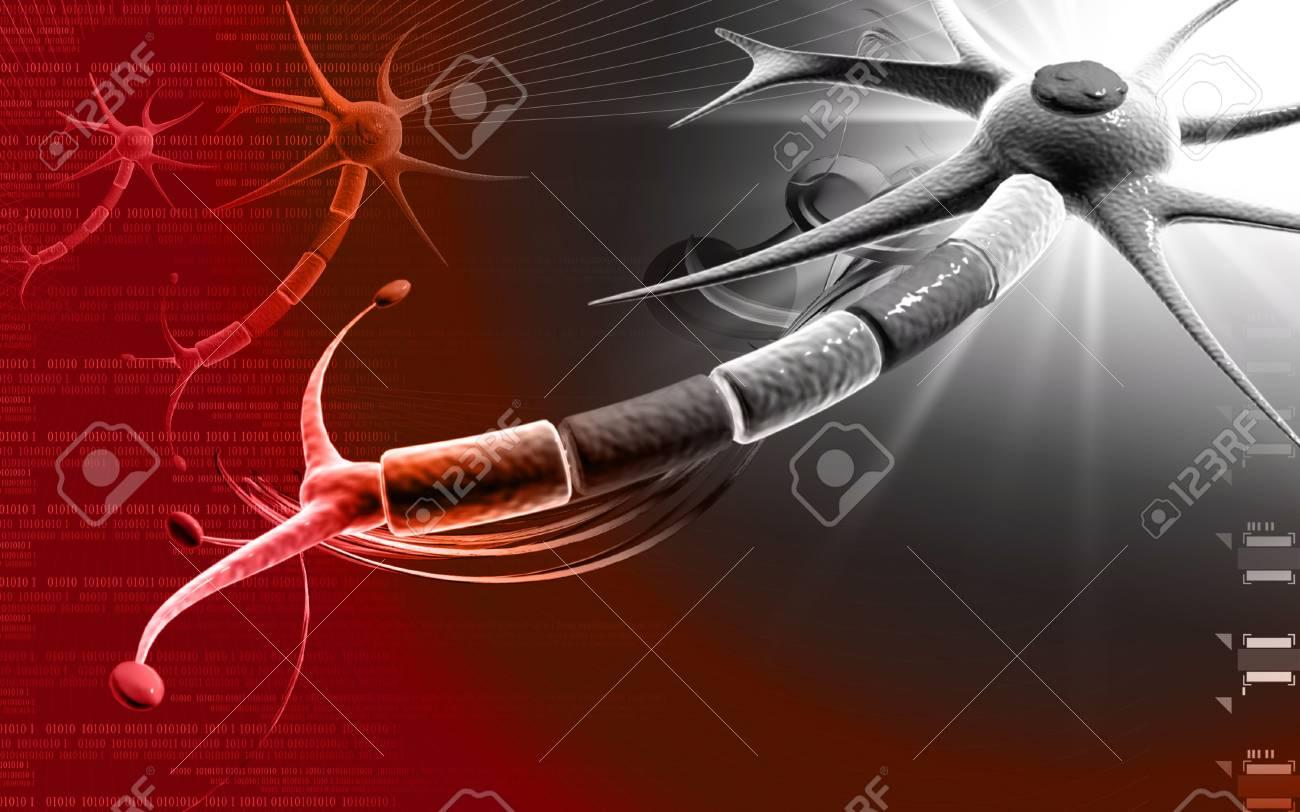 Digital illustration of  neuron  in colour  background Stock Illustration - 10028944
