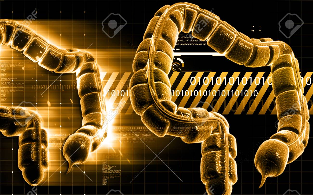 Digital illustration of large intestine in colour background Stock Photo - 18871293