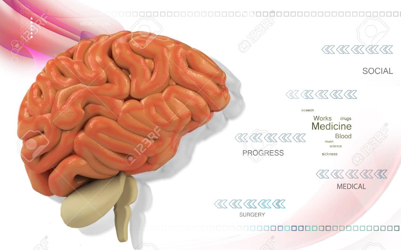 Digital illustration of brain in colour background - 52107485