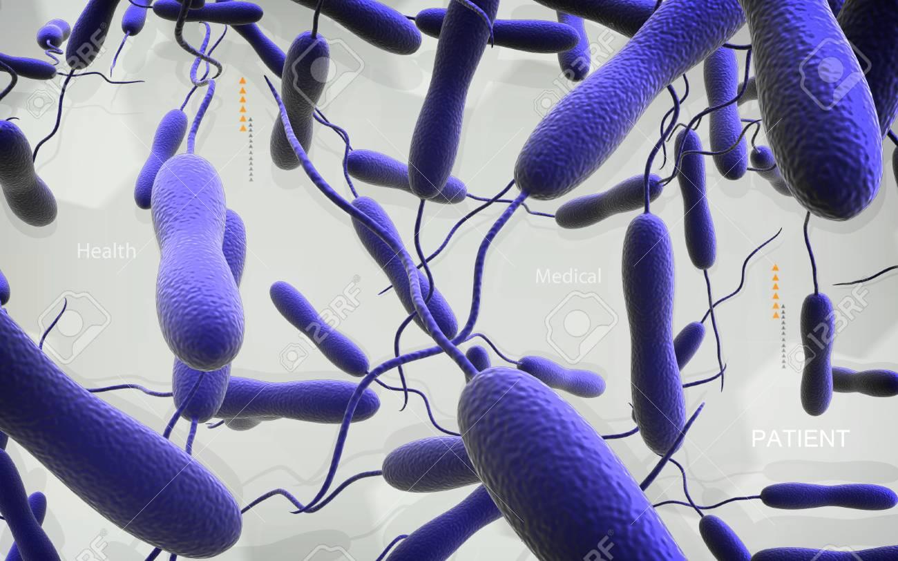 Digital illustration of cholera bacteria in colour background - 52506592