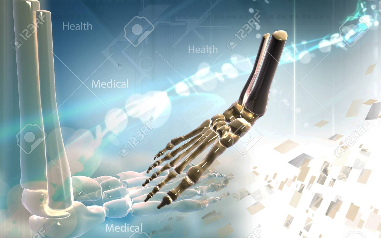 Digital illustration of Leg bone in colour background - 52796507