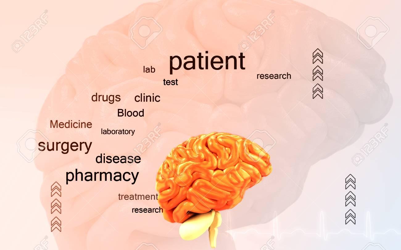 Digital illustration of brain in colour background - 53266145