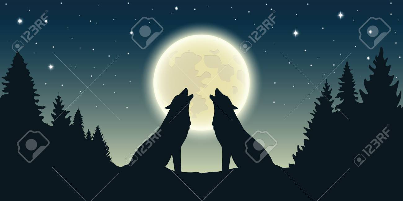 two wolves howl at the full moon in forest landscape vector illustration EPS10 - 125917663