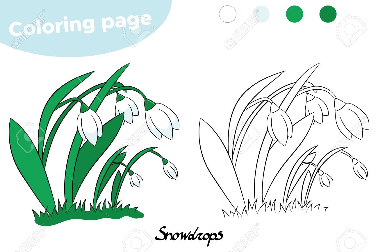 Malvorlage für Kinder . Frühlingsblumen - Schneeglöckchen . Handgemalt .  Vektor-Illustration