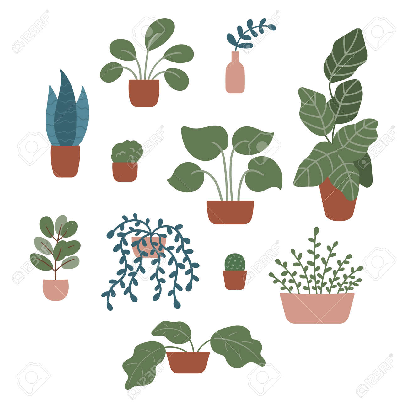 Hand drawn doodle plants in pots and vases on isolated background. Tropical and exotic flowers, vines, cactus and branches. Vector elements for cozy interior. - 165650153