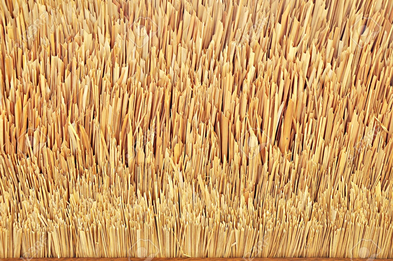 Tip Of Thatch Roof Texture Stock Photo   17017031