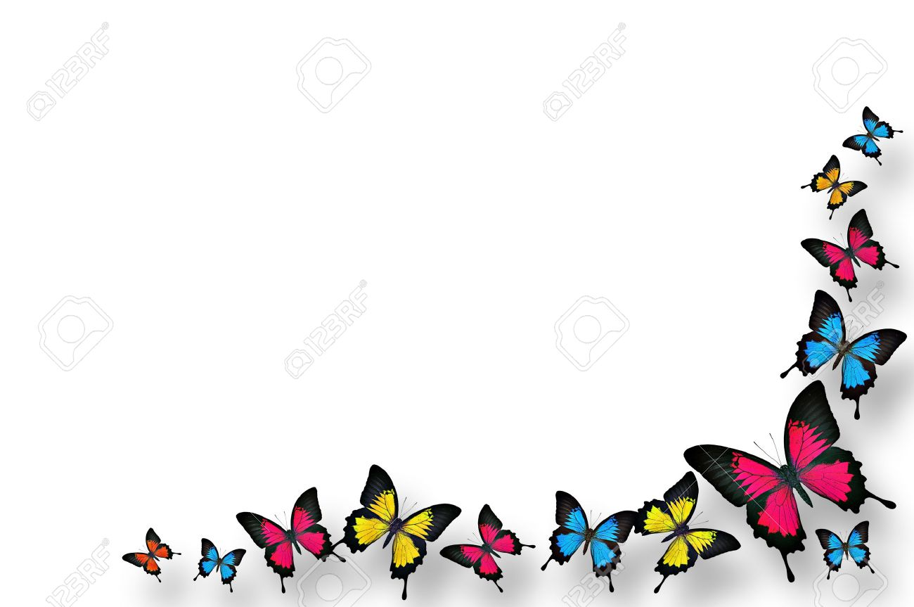 Fashion style And borders butterflies for girls