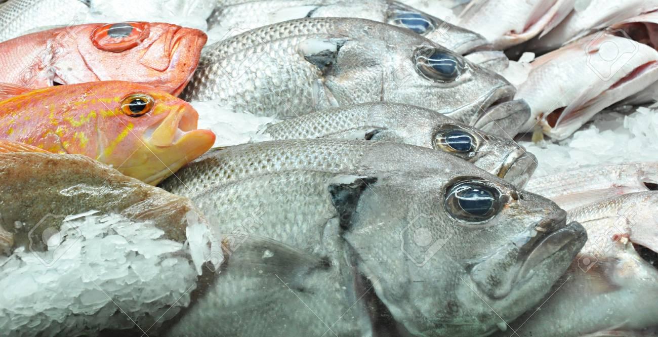 Fresh fish in the market Stock Photo - 20645823