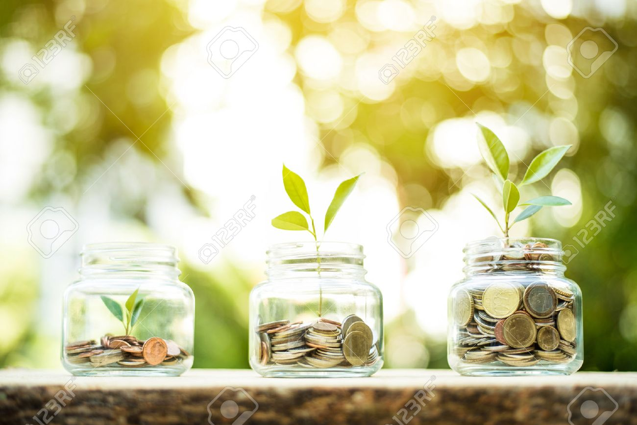 Young plant growing in the glass jars that have money (coins) - savings and investment concept - 63281881