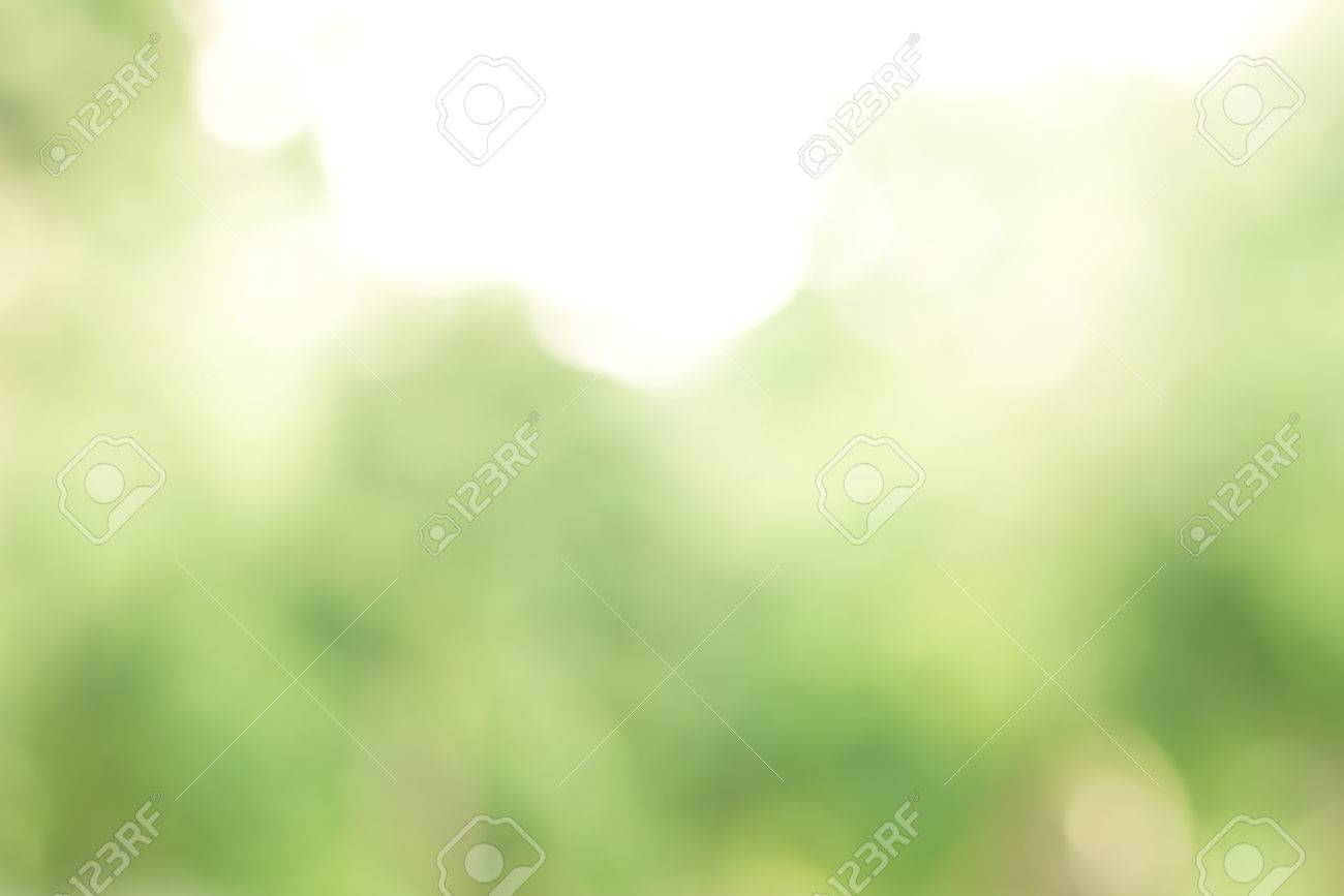 Blur green trees, abstract nature background - 71519910