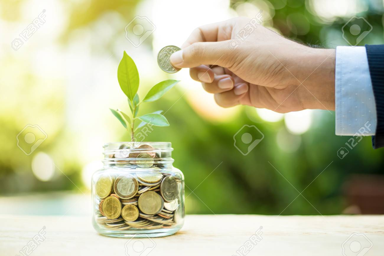Plant growing from money in the glass jar - financial metaphor, savings and investment concept - 80167643