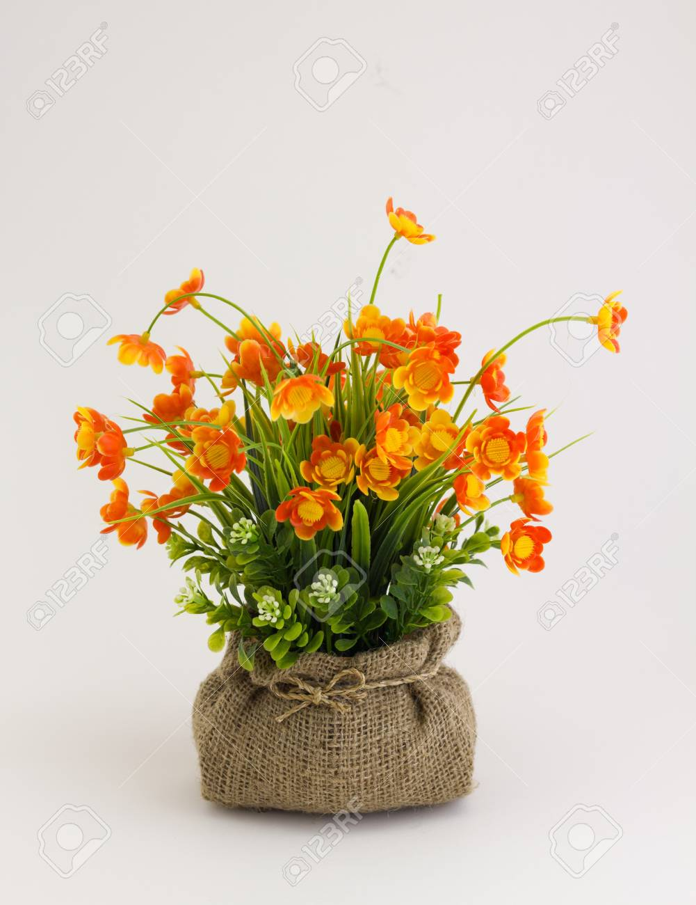 Yellow Flower On White Background With Bag Stock Photo Picture And