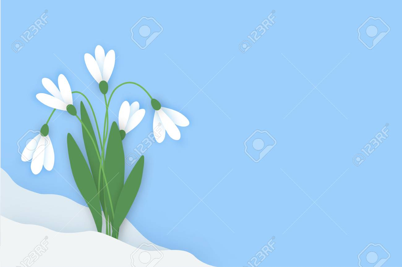 Spring horizontal banner with colored paper flowers with space spring horizontal banner with colored paper flowers with space for your text flowers white snowdrops mightylinksfo