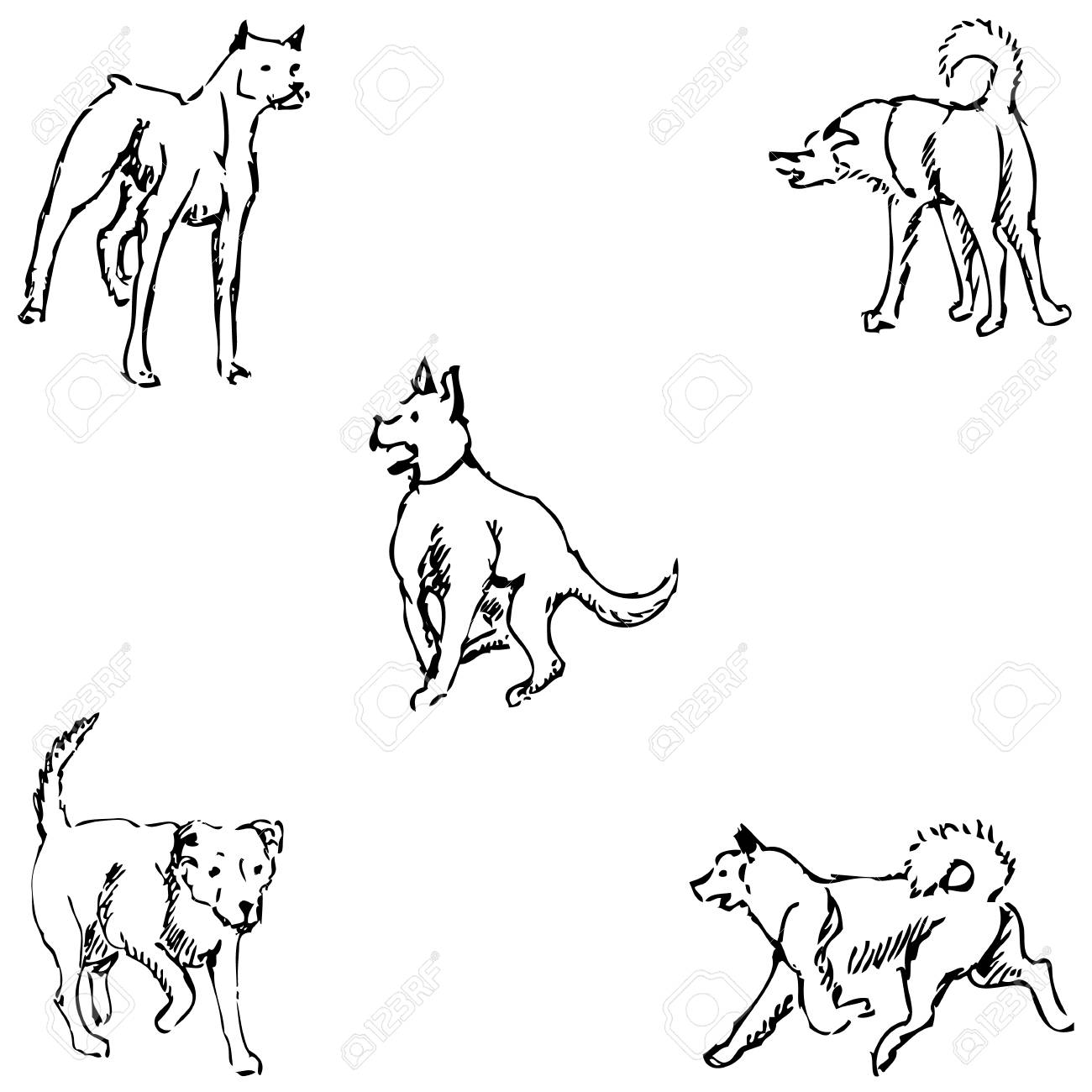 Dogs sketch pencil drawing by hand vector image stock vector 67875611