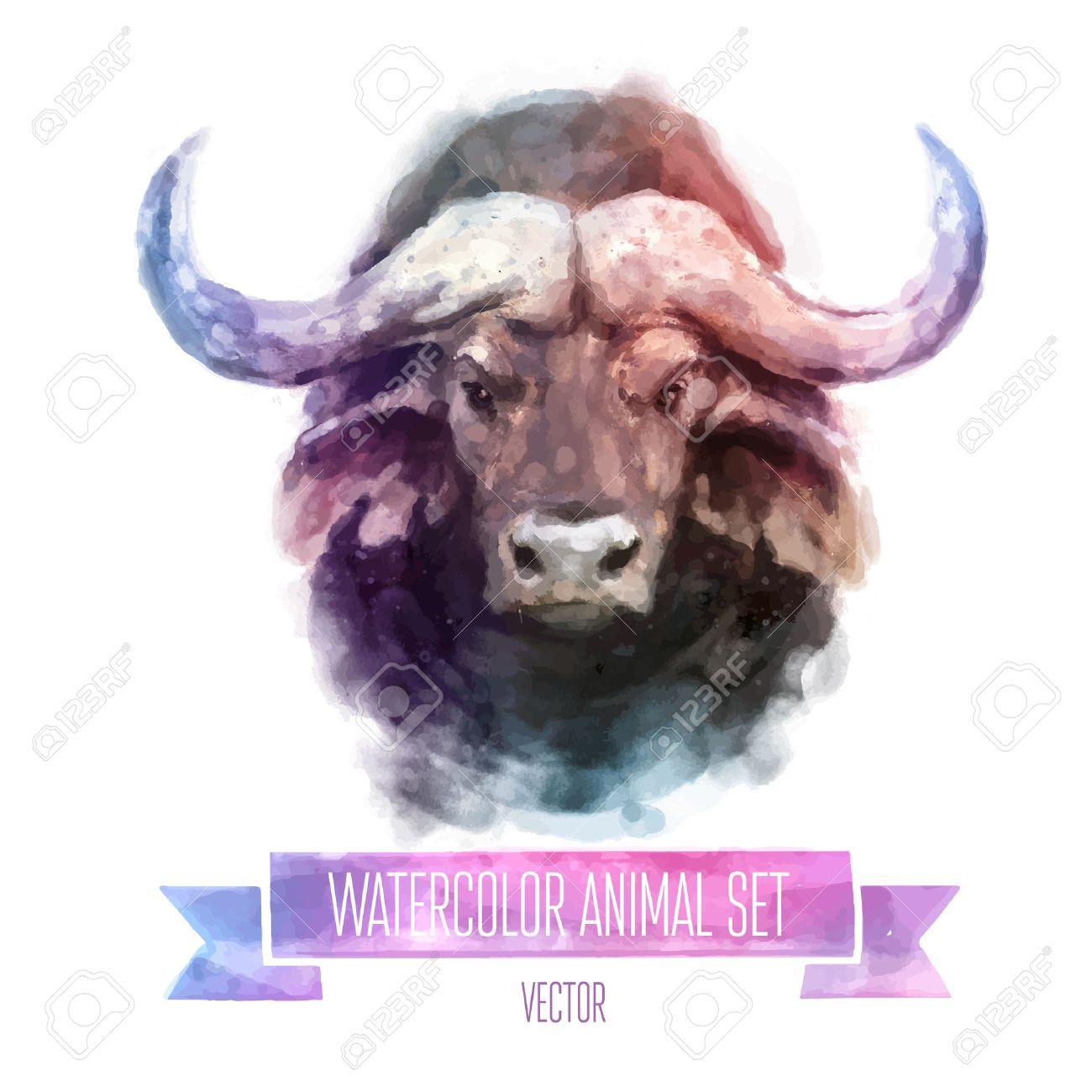 Vector set of watercolor illustrations. Cute bull - 40400325