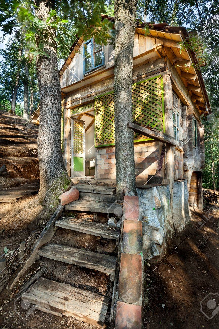 Stock photo wooden house in forest house made of natural materials