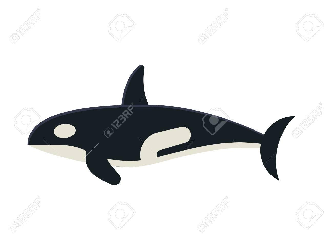 Killer whale cartoon