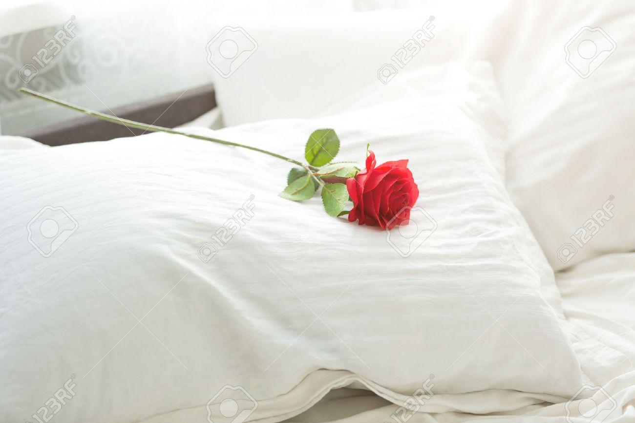 Фото цветок на постели