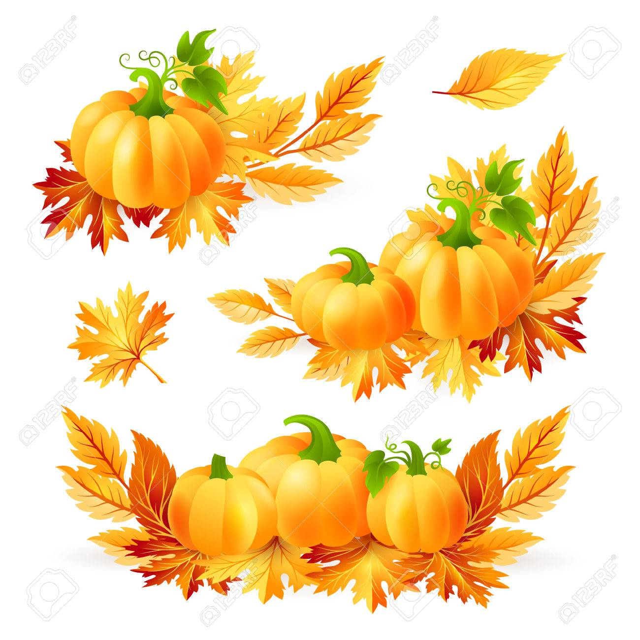 Thanksgiving design elements. Pumpkins with autumn leaves. Holiday vector decorations. - 62600980