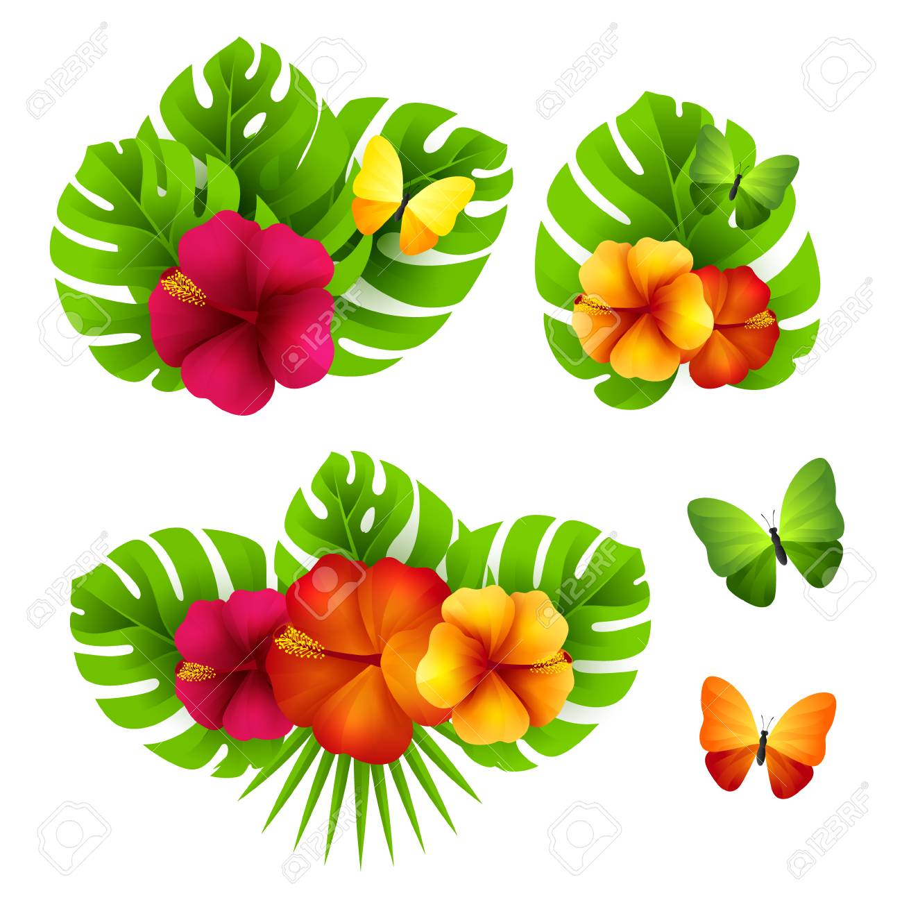 Tropical Design Elements With Palm Leaves Flowers And Butterflies Royalty Free Cliparts Vectors And Stock Illustration Image 62601002 This set of 8 high quality hand painted watercolor tropical bouquets perfect graphic for invitations, greeting cards, wallart, posters, logo, quotes and more. tropical design elements with palm leaves flowers and butterflies royalty free cliparts vectors and stock illustration image 62601002
