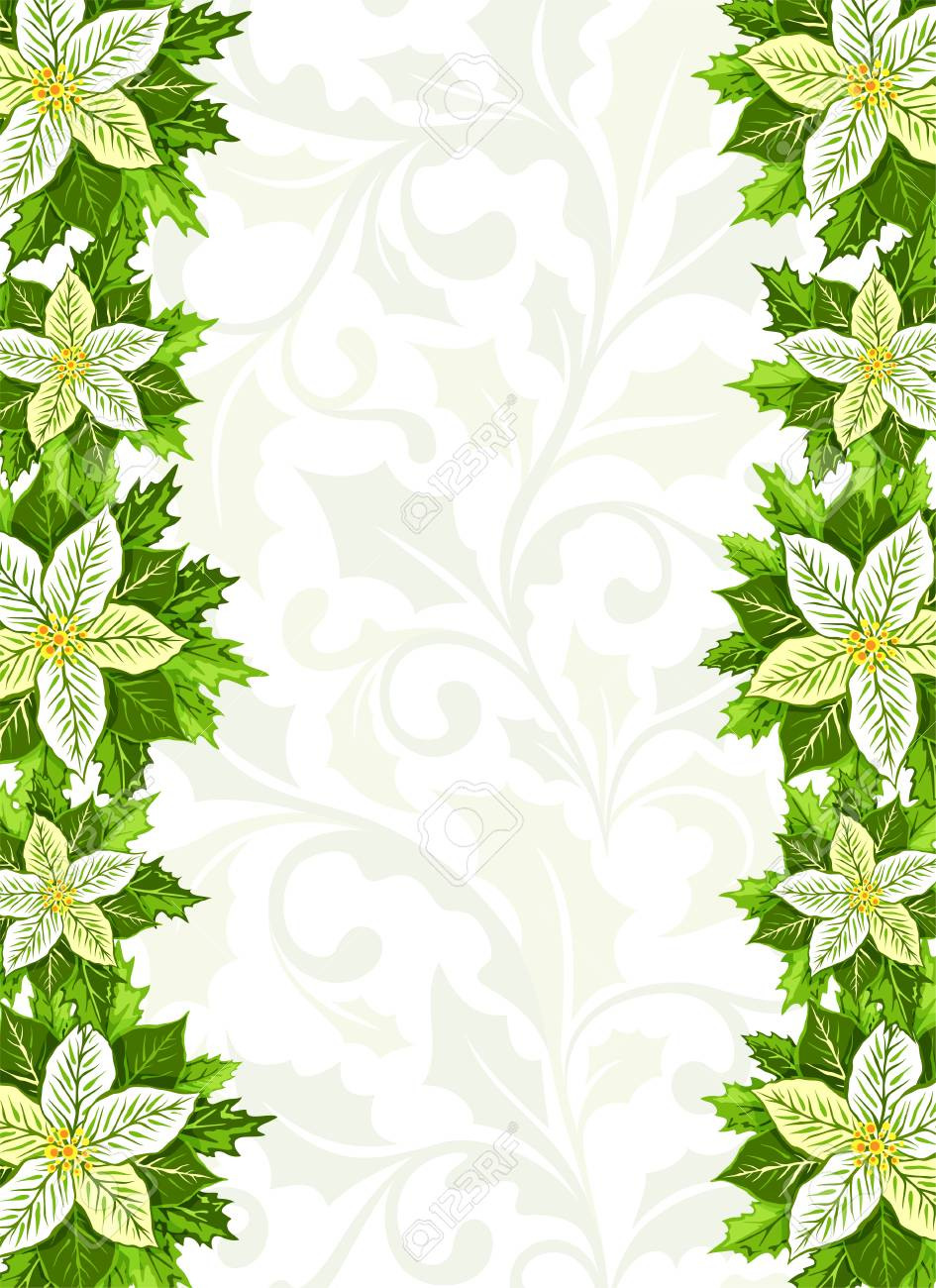 Christmas Background With White Poinsettia And Holly Leaves Decoration Elements Vertical Banner Border