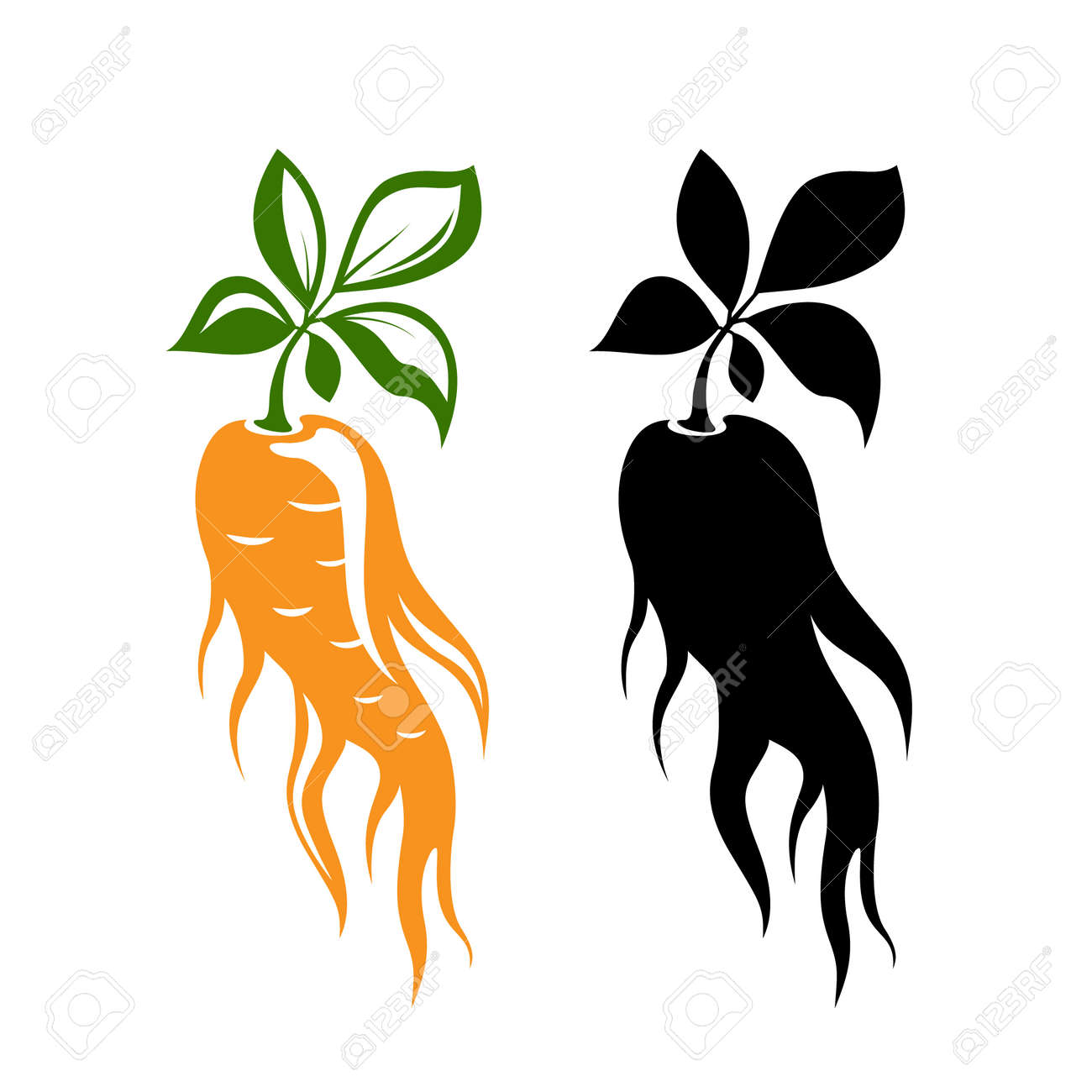 Red ginseng emblem. Traditional chinese golden root. Isolated vector illustration. Colorful and black silhouettes. - 158145337