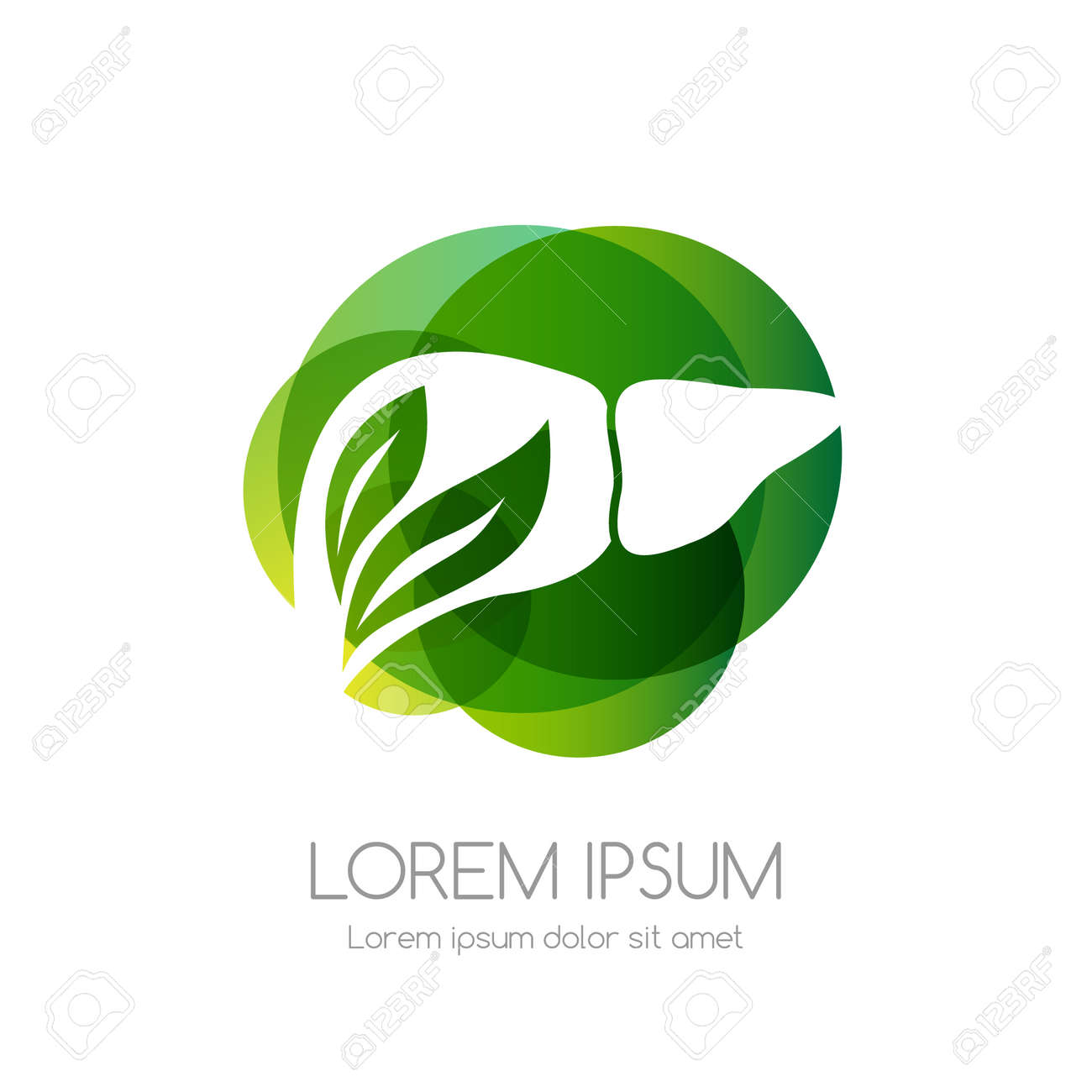 Liver with leaves and green abstract shape. Medical emblem. Health care vector icon. - 158145317