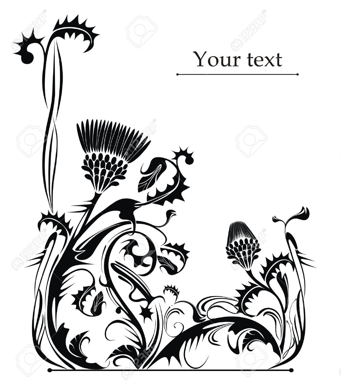 vector drawing of the thistle plant - 14569140