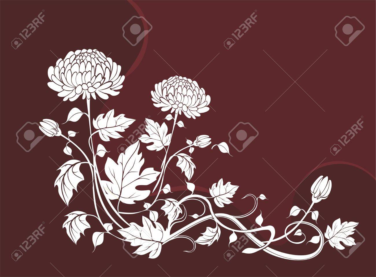 Elegant  flower background with chrysanthemums Stock Vector - 21744924