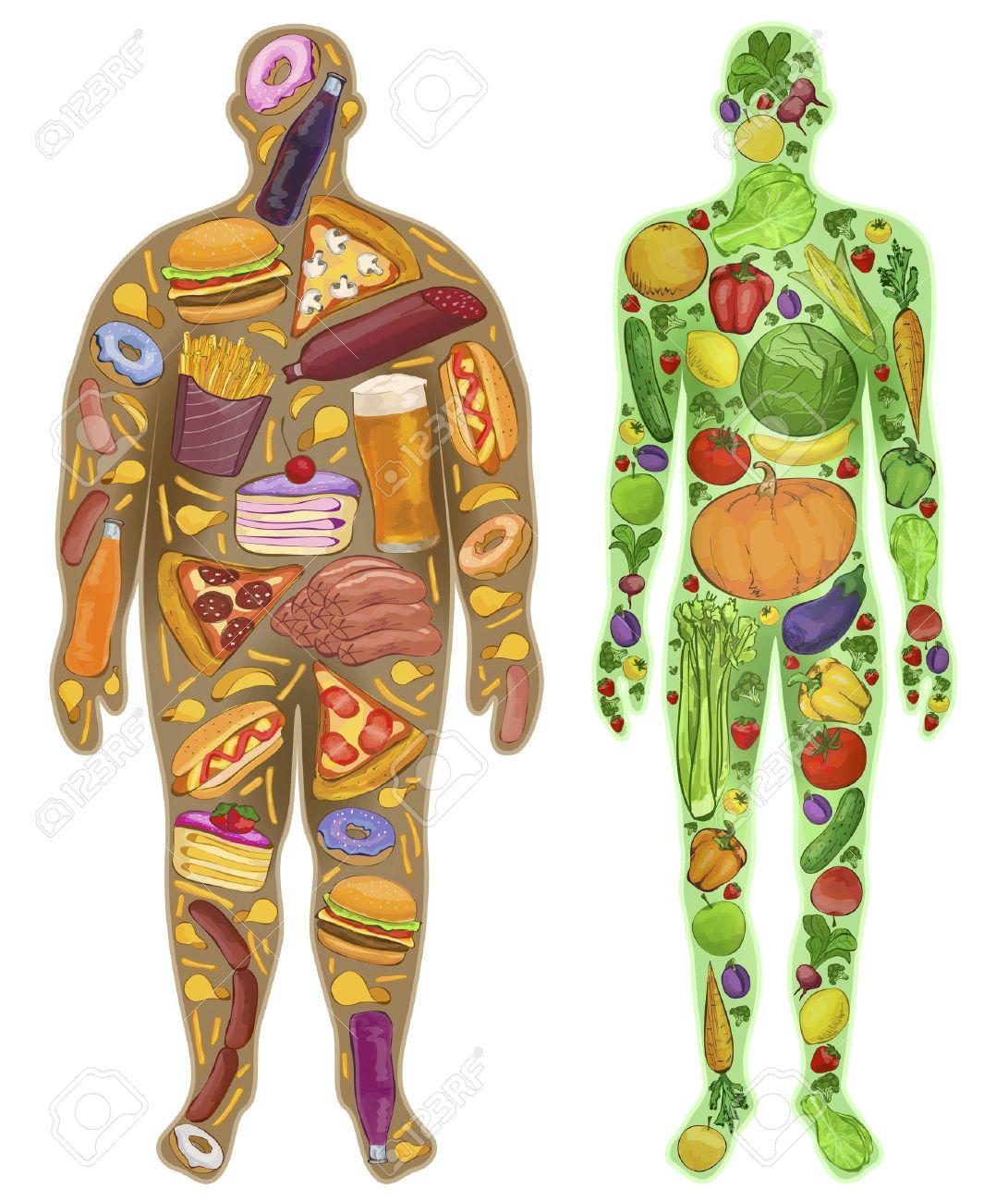Human, thin, fat. Nutrition, food. New. illustration - 50549801