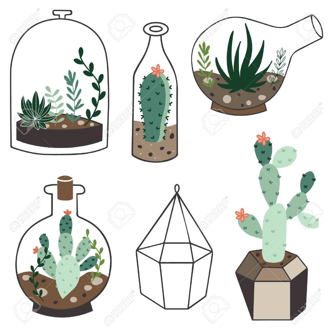 Vector Set With Succulents Flowers And Glass Terrariums Vector Royalty Free Cliparts Vectors And Stock Illustration Image 37218328