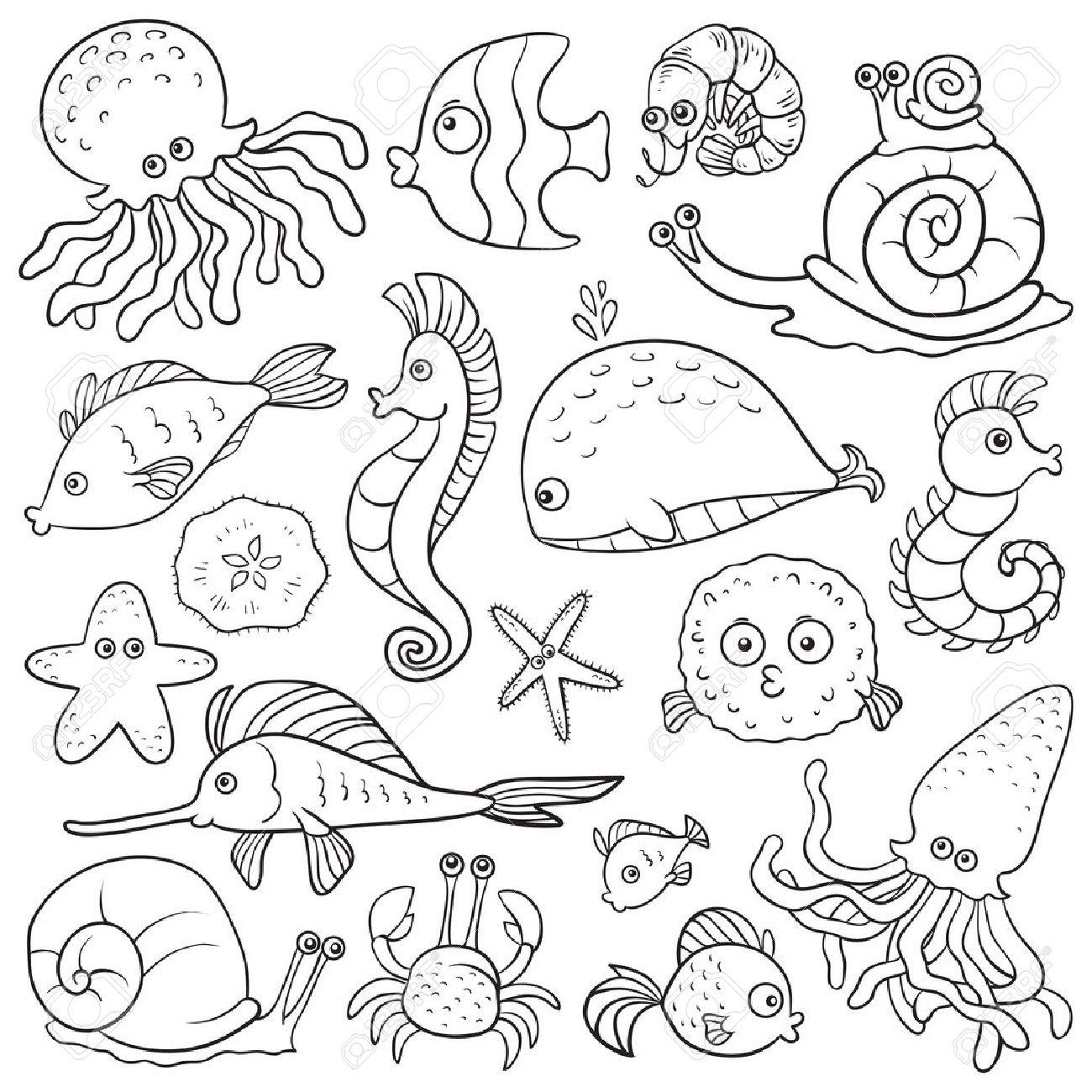 海洋生物 の塗り絵のイラスト素材ベクタ Image 33026009