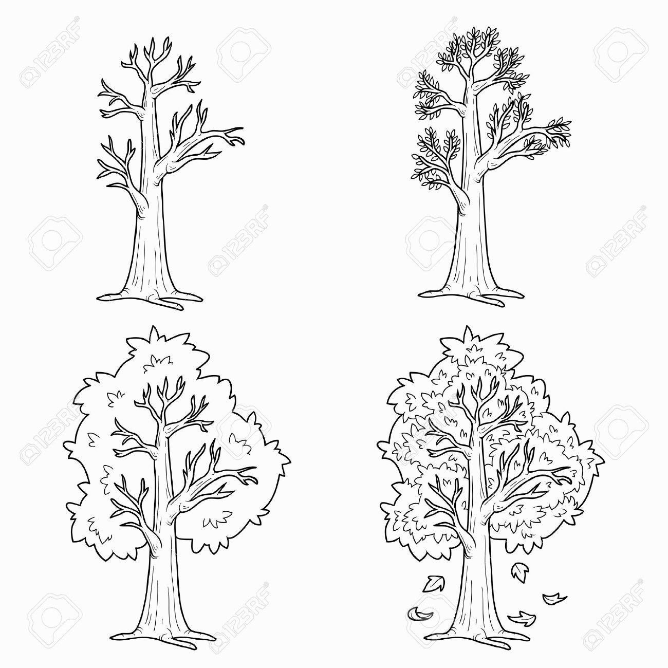 coloring book four seasons vector set of trees stock vector 34872560 - Coloring Book Trees