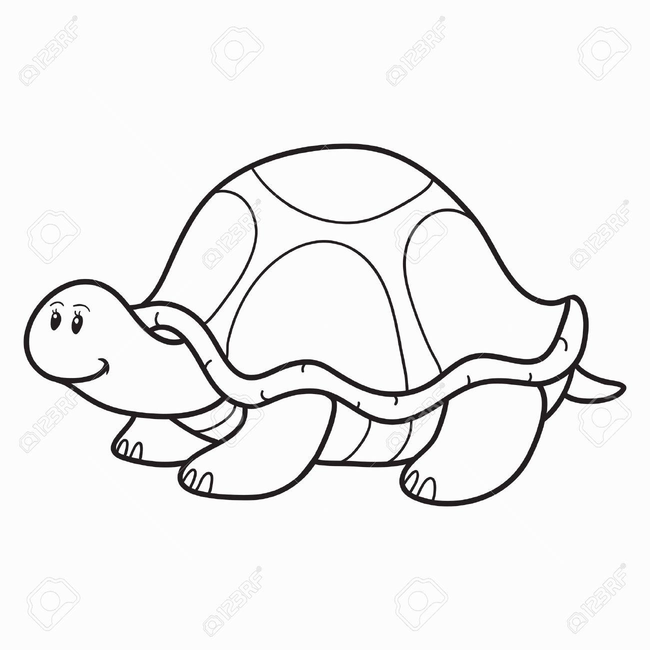 Tortugas Para Colorear. Top Ilustracin De Dibujos Animados Blanco Y ...