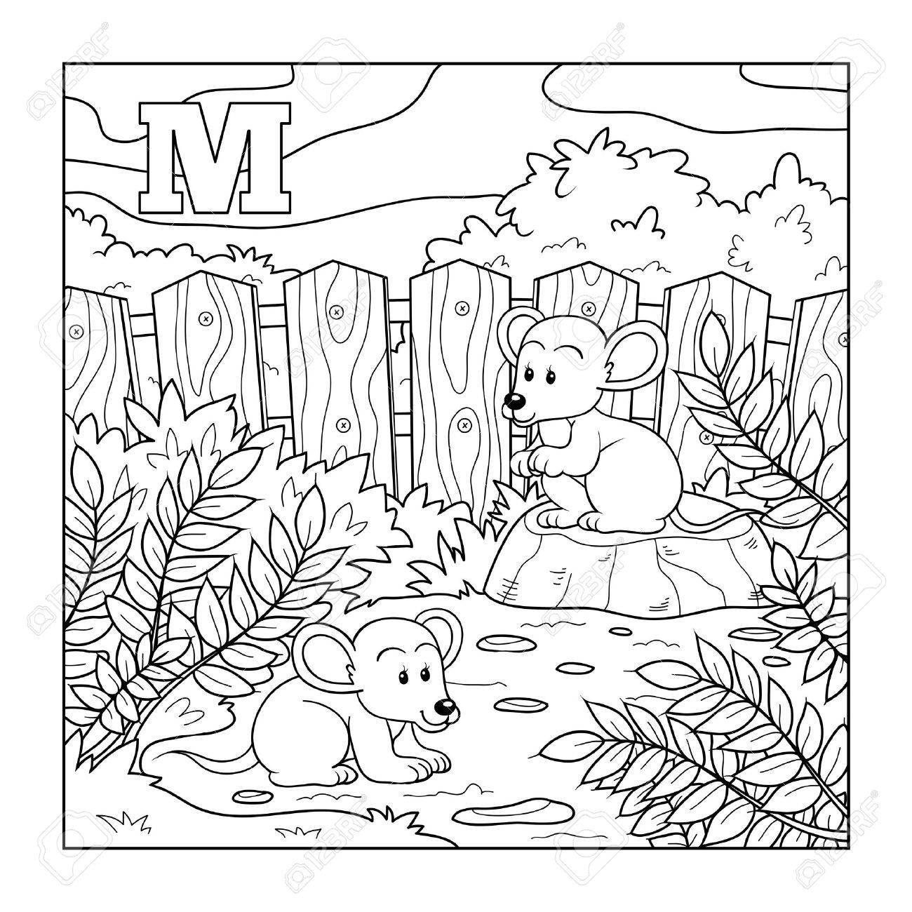 Libro Para Colorear Ratones Alfabeto Incoloro Para Los Niños Letra M