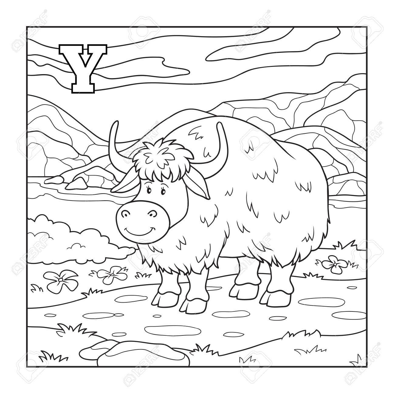 Free coloring pages yak - Coloring Book Yak Colorless Illustration Letter Y Stock Vector 37580108