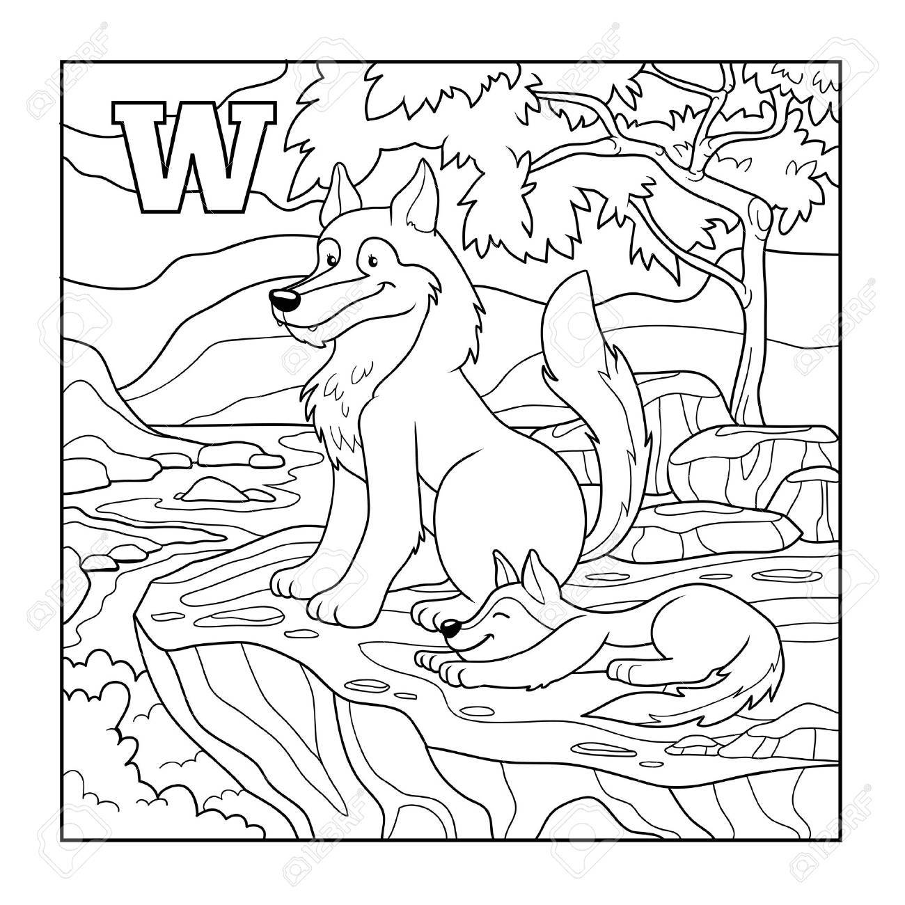 coloring book wolf colorless illustration letter w royalty