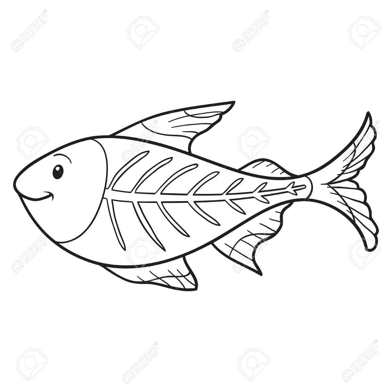 Coloring Book X Ray Fish Stock Vector