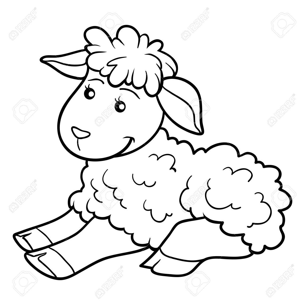 Sheep Coloring Book - Worksheet & Coloring Pages