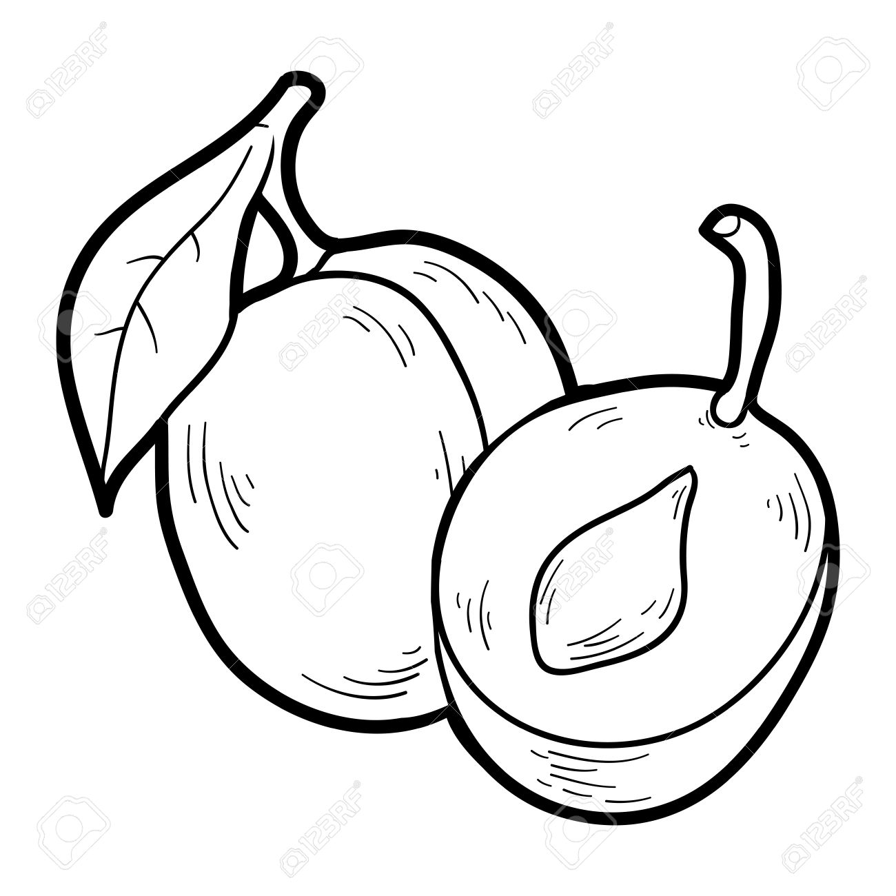 Coloring Book For Children Fruits And Vegetables Plum Stock Vector