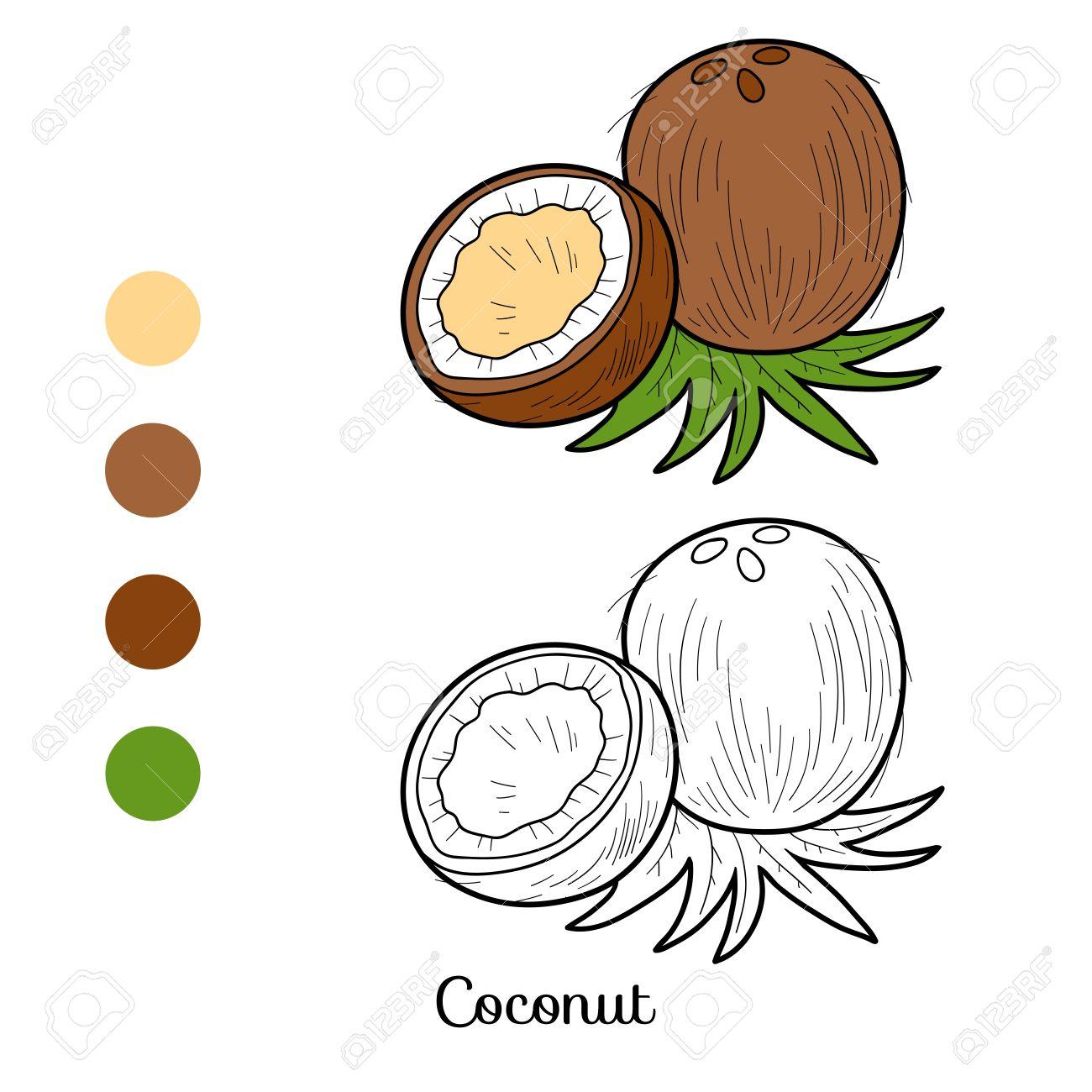 Livre De Coloriage Pour Les Enfants Les Fruits Et Légumes Noix De