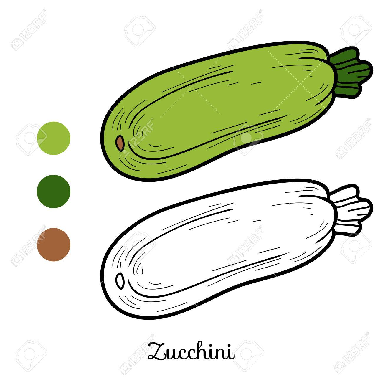 Coloring Book For Children: Fruits And Vegetables (zucchini) Royalty ...