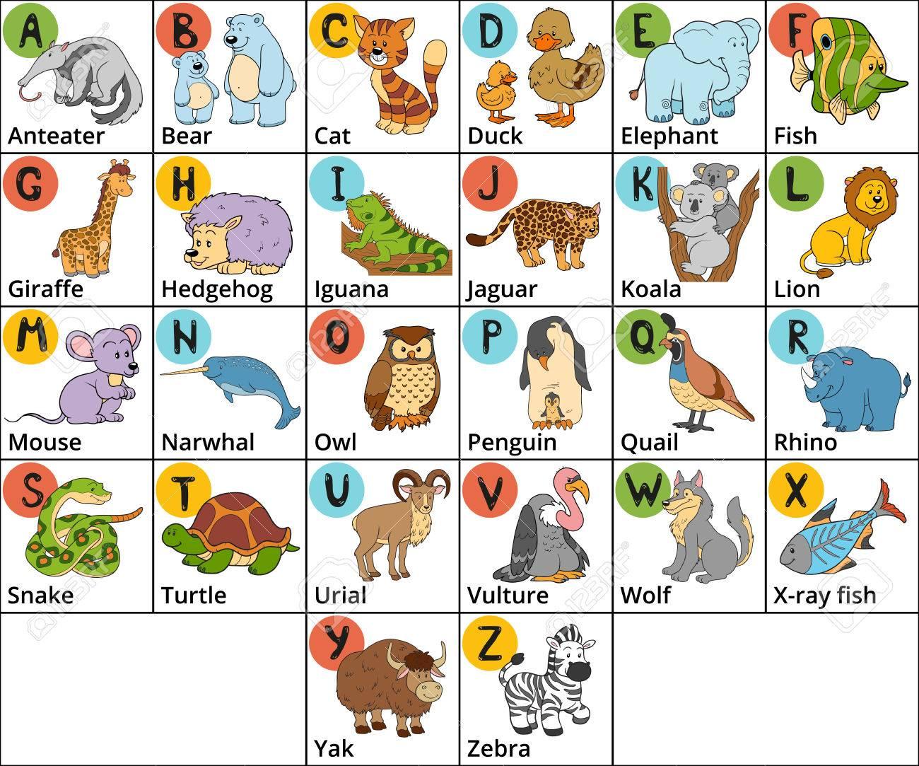 Vector De Color Zoológico Alfabeto Con Los Animales Lindos En El ...