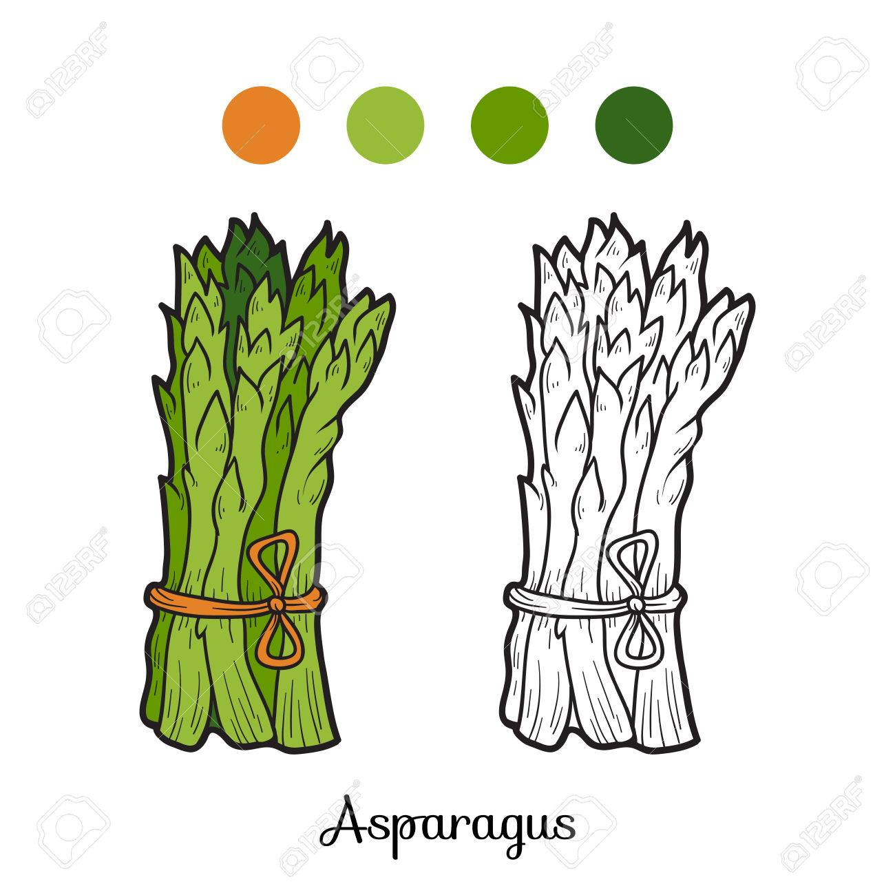 Coloring Book For Children Fruits And Vegetables Asparagus Stock Vector