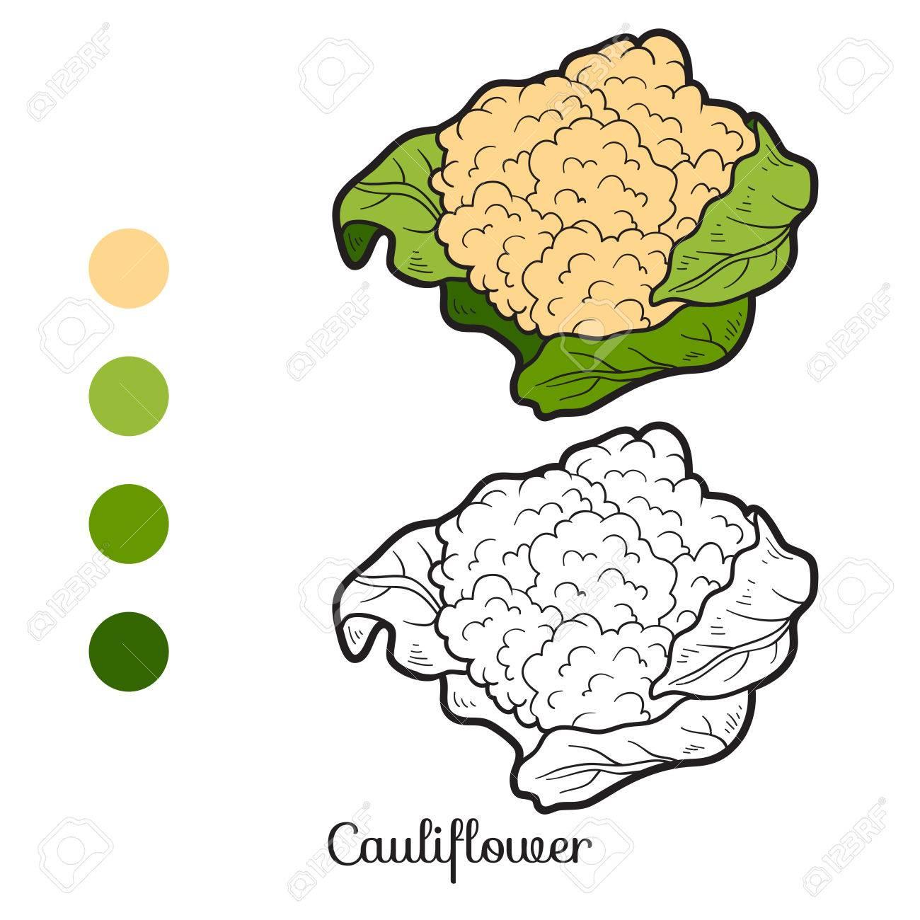 Livre De Coloriage Pour Les Enfants Les Fruits Et Légumes Chou Fleur