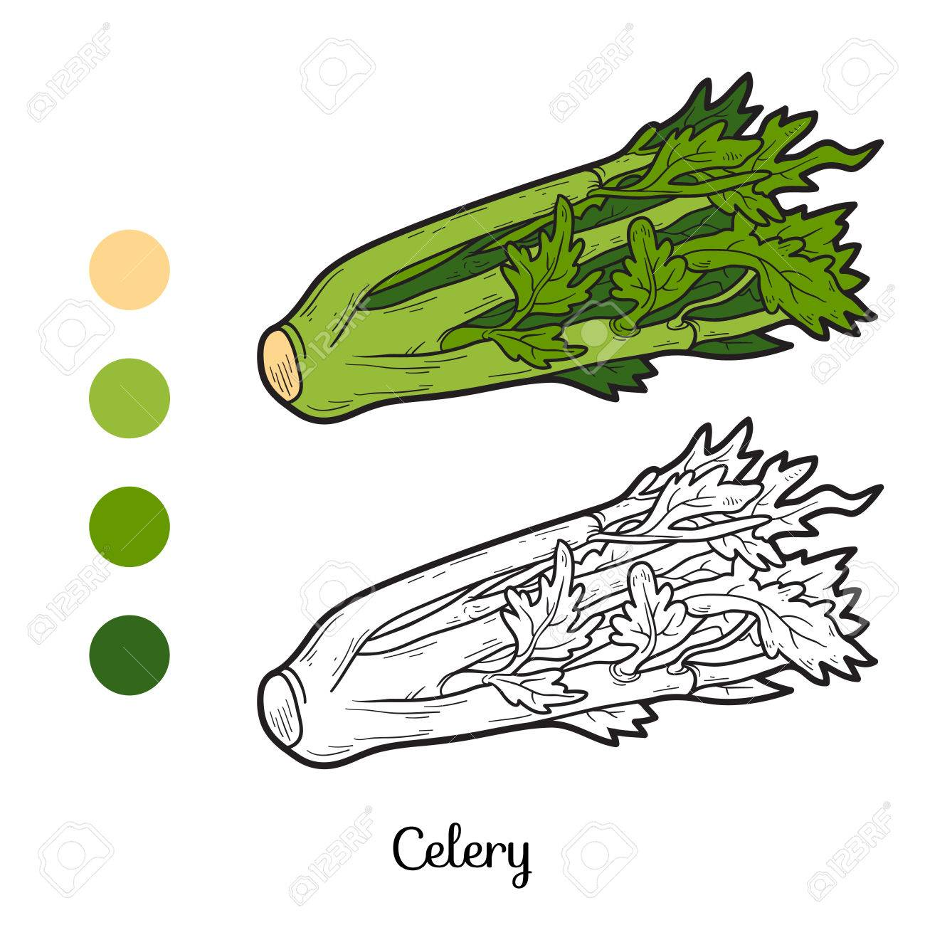 Coloring Book For Children: Fruits And Vegetables (celery) Royalty ...