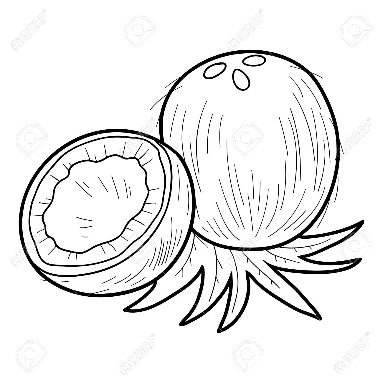 Coloring Book For Children Fruits And Vegetables Coconut Stock Vector