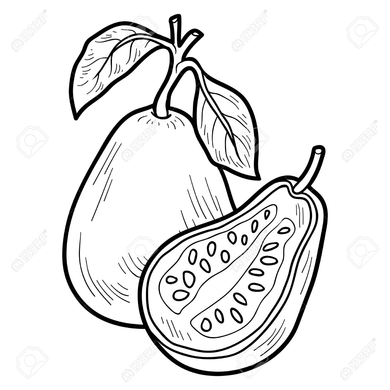 Coloring Book For Children Fruits And Vegetables Guava Stock Vector