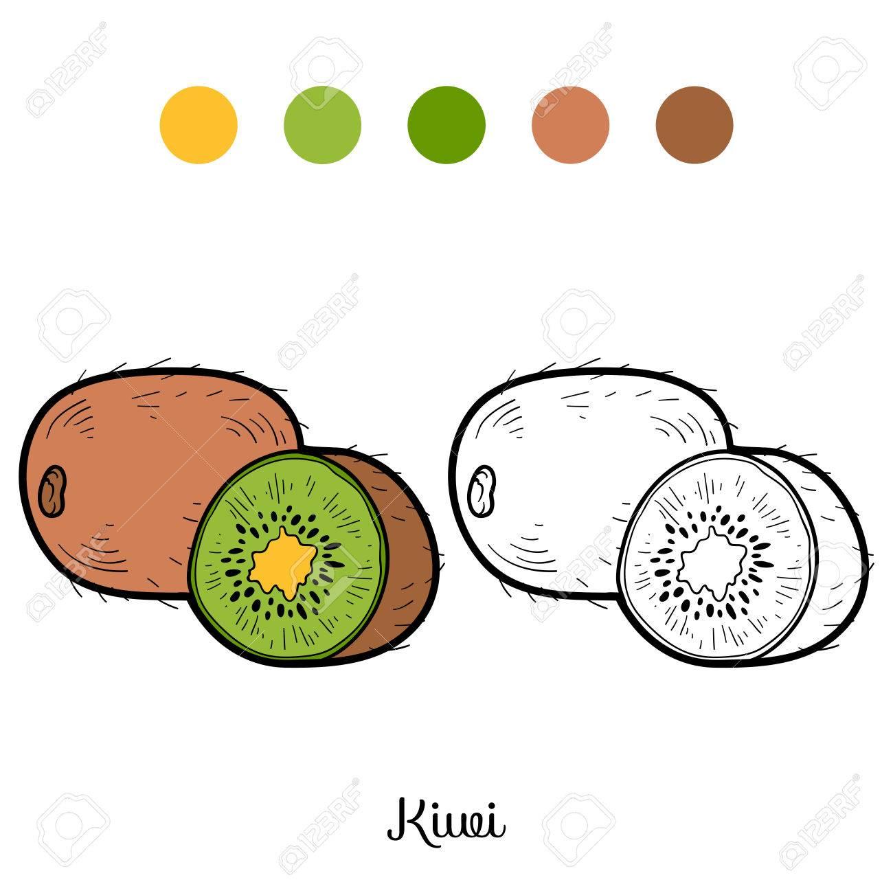 Coloriage Kiwi Fruit.Livre De Coloriage Pour Les Enfants Les Fruits Et Legumes Kiwi